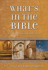 What's in the Bible: A Tour of Scripture from the Dust of Creation to the Glory of Revelation - Sproul, R. C., Jr. / Wolgemuth, Robert / Thomas Nelson Publishers